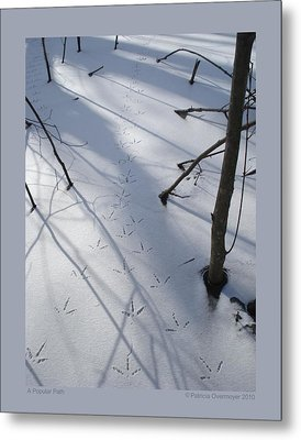 A Popular Path Metal Print by Patricia Overmoyer