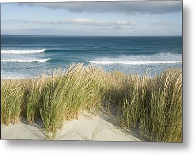 A Scenic Hillside Of The Beach Metal Print by Bill Hatcher