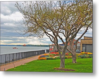 Metal Print featuring the photograph A View From The Garden by Michael Frank Jr