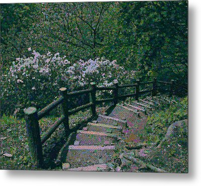 A Walk In The Park Metal Print by Tim Ernst