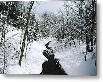 A Winter View Of Rush Brook Metal Print