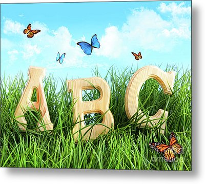 Abc Letters In The Grass Metal Print by Sandra Cunningham