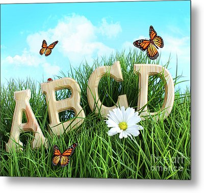 Abc Letters With Daisy In Grass Metal Print by Sandra Cunningham