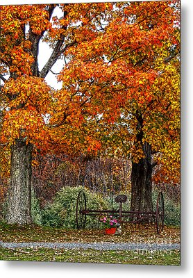 Adirondack Autumn Beauty Metal Print by Diane E Berry