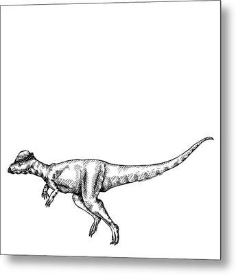 Alaskacephale Dinosaur Metal Print by Karl Addison