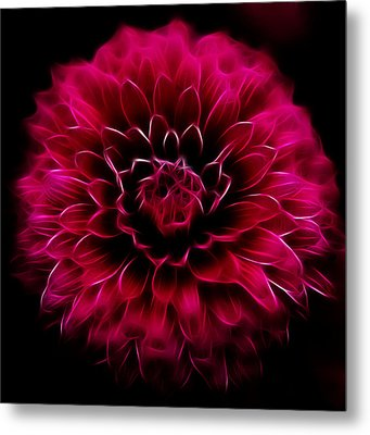 Metal Print featuring the photograph Alive by Joetta West