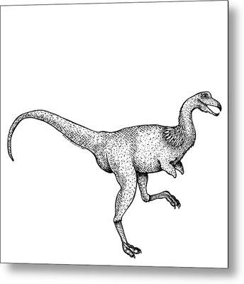 Alvarezsaurus - Dinosaur Metal Print by Karl Addison