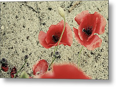 Among The Cross Metal Print by Empty Wall