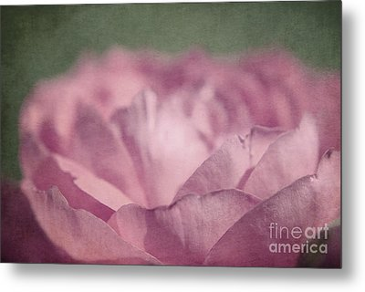 Antique Pink Metal Print by Aimelle