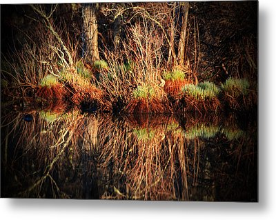 April's Pond Metal Print by Karol Livote