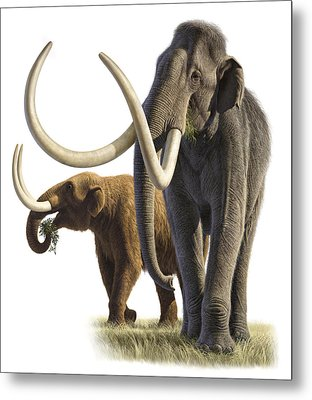 Artwork Of A Mammoth And A Mastodon Metal Print by Raul Martin