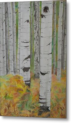 Aspens And Bracken Metal Print by Laurel Thomson