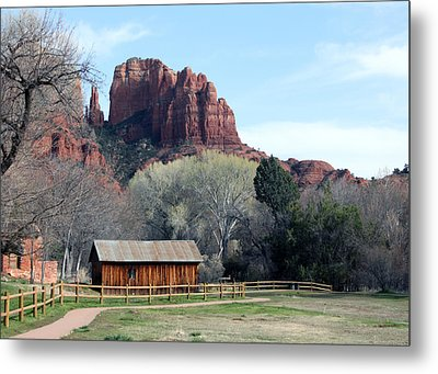 At The Base Metal Print by Debbie Hart