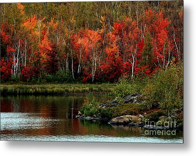 Autumn In Canada 2 Metal Print by Marjorie Imbeau