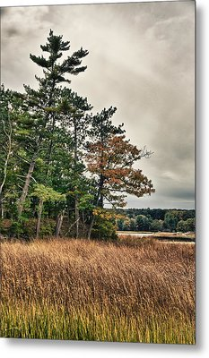 Autumn In Nh Metal Print by Edward Myers