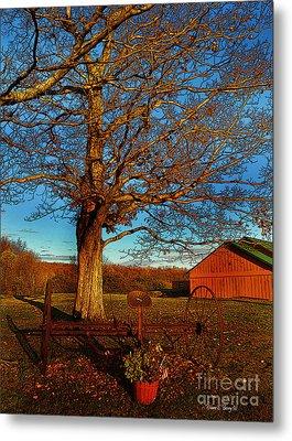 Autumn Rest Metal Print by Diane E Berry