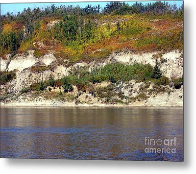 Metal Print featuring the photograph Autumn's Brush by Jim Sauchyn