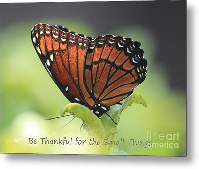 Be Thankful Metal Print by Carol Groenen