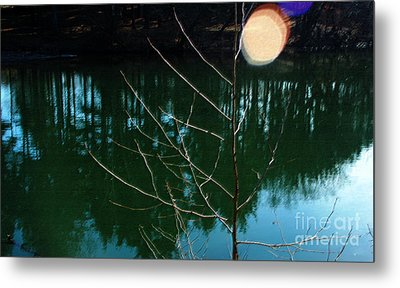 Beauty Spot Metal Print by Vilas Malankar