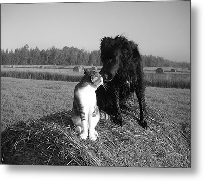 Best Buddies Black And White Metal Print