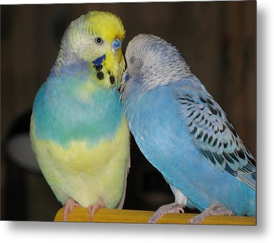 Best Friends Metal Print by Kimberly Mackowski