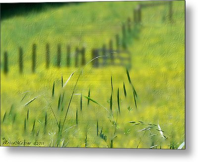Metal Print featuring the photograph Beyond The Weeds by EricaMaxine  Price