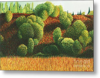 Bits Of Color In Driftwood Canyon Metal Print by Anne Havard
