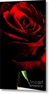 Black Shadows On Red Rose Metal Print by EGiclee Digital Prints