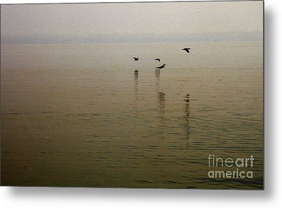 Metal Print featuring the photograph Bliss by Clayton Bruster