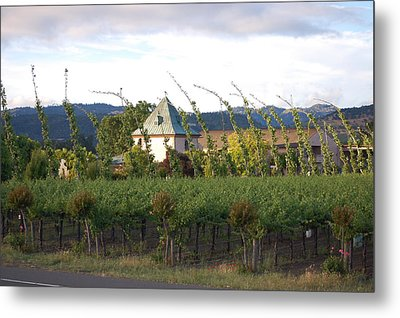 Blowing Grape Vines Metal Print by Holly Blunkall