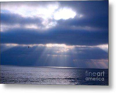 Metal Print featuring the photograph Blue Skies by Kim Pascu