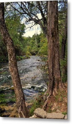Metal Print featuring the photograph Blue Spring Branch by Marty Koch