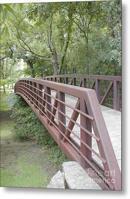 Metal Print featuring the photograph Bridge To Beyond by Vonda Lawson-Rosa