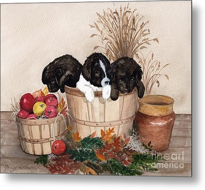 Metal Print featuring the painting Bushel Of Fun  by Nancy Patterson