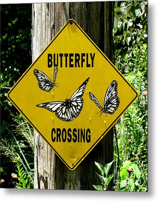 Butterfly Crossing Metal Print