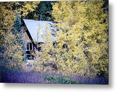 Cabin Hideaway Metal Print by James BO  Insogna