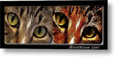 Cat Eyes Metal Print by EricaMaxine  Price