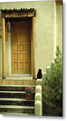 Metal Print featuring the photograph Cat Post by Brent L Ander