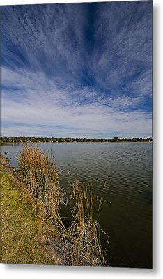 Cattails Against Colorado Blue Metal Print by KatagramStudios Photography