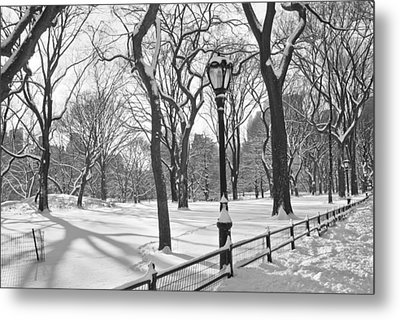 Central Park Snowfall Bw Metal Print by Andrew Kazmierski