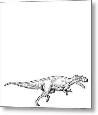 Ceratosaurus - Dinosaur Metal Print by Karl Addison