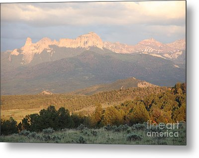 Metal Print featuring the photograph Cimmarons At Sunset by Marta Alfred
