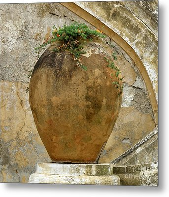 Metal Print featuring the photograph Clay Pot by Lainie Wrightson