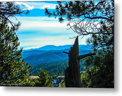 Metal Print featuring the photograph Colorado View by Shannon Harrington