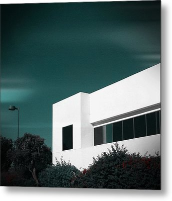 Metal Print featuring the photograph Composure by Kevin Bergen