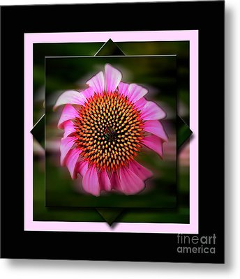 Coneflower Geometric Metal Print