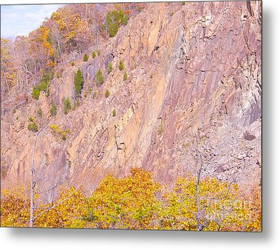 Metal Print featuring the photograph Connecticut Autumn Granite by Cindy Lee Longhini