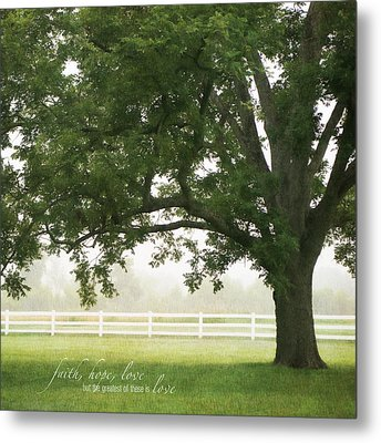 Country Fence Color Metal Print by Mary Hershberger
