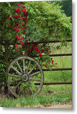 Metal Print featuring the photograph Country Simplicity by Julie Clements