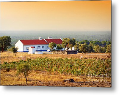 Countryside House Metal Print by Carlos Caetano